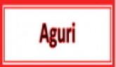 Aguri